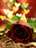 Red rose on a wooden table and hearts. Royalty Free Stock Photo