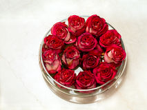 Red rosebuds in glass vase Royalty Free Stock Photos