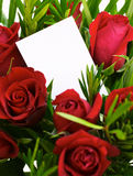 Red roses 1. A bouquet of red roses with a blank gift tag Royalty Free Stock Image