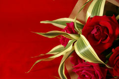 Red roses. Bouquet of red roses on a red background Stock Photography