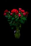 Red roses. On black background Royalty Free Stock Photo