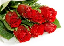 Free Red Roses Royalty Free Stock Image - 14926926