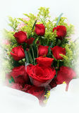 Red roses. A dozen of red roses isolated in white stock images