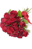 Red roses. Isolated space for text Stock Images