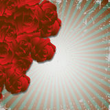 Red roses. Retro grunge background with red roses Stock Images