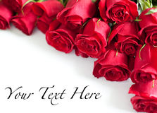 Free Red Roses Stock Image - 28190771