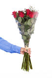 Red roses. Man holding bunch of red roses isolated on white Stock Photos