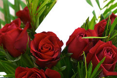 Red roses 3. A bouquet of red roses with a blank gift tag Royalty Free Stock Images