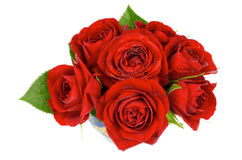 Free Red Roses Royalty Free Stock Photos - 34014718