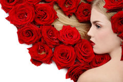 Free Red Roses Stock Photos - 6890083
