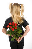 Red roses as present Stock Images