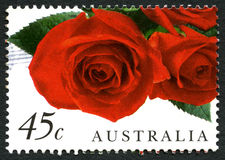 Red Roses Australian Postage Stamp Royalty Free Stock Photo
