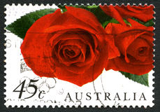 Red Roses Australian Postage Stamp Stock Photos