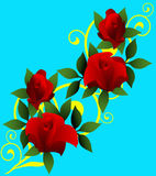 Red roses background Stock Image