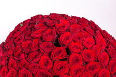 Red roses background - natural texture of love Stock Images