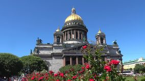 Red roses on the background of old St. Isaac Cathedral. Saint Petersburg, Russia. Red roses on the background of old St. Isaac Cathedral on a Sunny June day stock footage