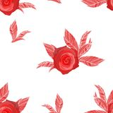 Red roses on  background Royalty Free Stock Image