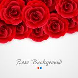 Red roses background. Rose cover for wedding invitation, postcard, greeting card or valentine day banner. Flower and Royalty Free Stock Image