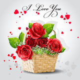 Red roses in a basket on a gray background.  Stock Photos