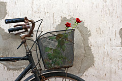 Red roses in basket of old rusty bicycle 4 Royalty Free Stock Image