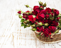 Red roses in basket Stock Images