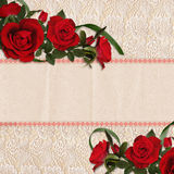 Red roses on a beautiful lace background Stock Images