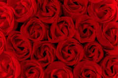 Red roses background Royalty Free Stock Images
