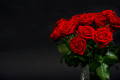 Red roses on black background Royalty Free Stock Images