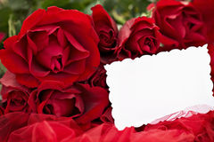 Red Roses and Blank Card Stock Images