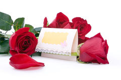 Red roses with a blank gift card. On a white background Royalty Free Stock Photo