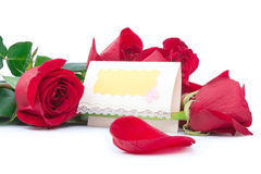 Red roses with a blank gift card. On a white background Royalty Free Stock Photos