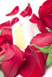 Red roses with a blank gift card. On a white background Stock Images