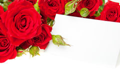 Red roses and blank invitation card Stock Images