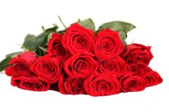 Red roses bouquet. Red roses isolated on white Stock Photography
