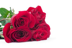 Red roses in a bouquet Stock Image
