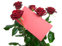 Red roses in a bouquet with a blank card Stock Images