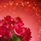 Red roses bouquet isolated. Stock Image