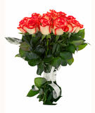 Red roses bouquet isolated. Royalty Free Stock Images