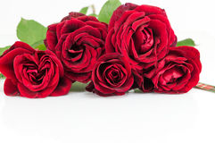 Red roses bouquet with ribbon on white table Royalty Free Stock Photos
