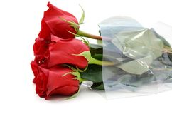 Red roses bouquet Stock Images