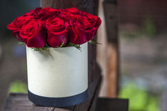 Red roses bouquet in the white gift box. Royalty Free Stock Photos