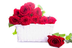 red roses in a box Stock Photo