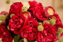 Red roses are with brick wall background. Stock Photo