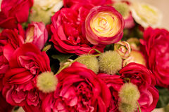 Red roses are with brick wall background. Royalty Free Stock Image