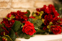 Red roses are with brick wall background. Stock Photos