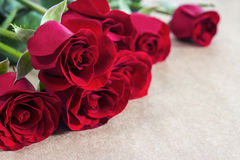 Red roses on brown paper Stock Photos