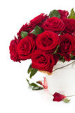 Red roses in bucket. Stock Photos