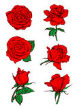 Red roses buds icons. Flower sketch emblem. Red roses buds icons. Vector sketch botanical elements with stem and leaves. Scarlet rose flowers emblems for tattoo royalty free illustration
