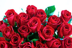 Red roses in a bunch royalty free stock photography