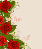 Red roses and butterflies Stock Images
